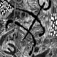 Segno in movimento (Caos) 11